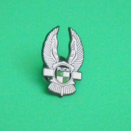 Pin Puch wings