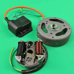 Electronic ignition complete Puch Maxi